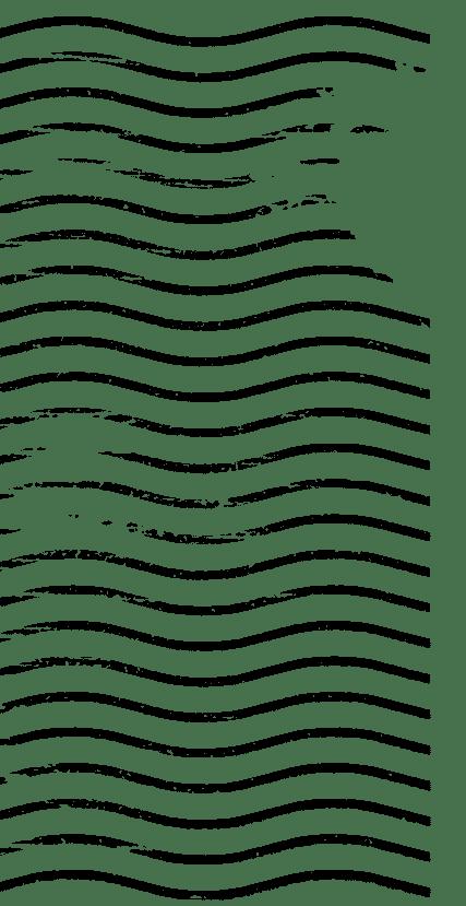 The Festival – Open Roads VanLife Festival